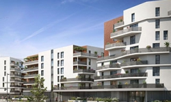 252 Faubourg<br />Toulouse (31)